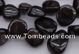 CCH617 15.5 inches 6*8mm - 10*14mm garnet chips gemstone beads