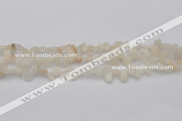 CCH624 15.5 inches 6*8mm - 10*14mm white moonstone chips beads