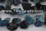 CCH628 15.5 inches 6*8mm - 10*14mm apatite gemstone chips beads