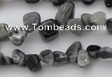 CCH633 15.5 inches 6*8mm - 10*14mm eagle eye jasper chips beads