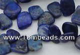 CCH634 15.5 inches 6*8mm - 10*14mm lapis lazuli chips beads