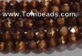 CCT319 15 inches 4mm faceted round cats eye beads wholesale
