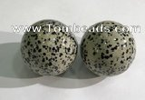 CDN1280 40mm round dalmatian jasper decorations wholesale