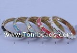 CEB31 5pcs 10mm width gold plated alloy with enamel bangles