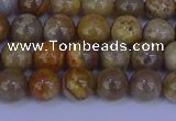 CFC201 15.5 inches 6mm round fossil coral beads wholesale