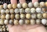 CFC324 15.5 inches 12mm round fossil coral beads wholesale