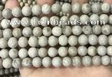 CFC331 15.5 inches 8mm round fossil coral beads wholesale