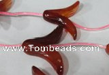 CFG504 15.5 inches 20*26mm carved flower red agate beads