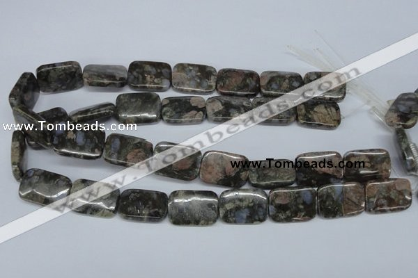 CGE03 15.5 inches 18*25mm rectangle glaucophane gemstone beads