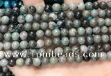 CGJ511 15.5 inches 6mm round green forst jasper beads wholesale