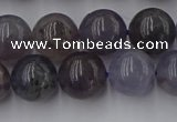 CIL102 15.5 inches 8mm round iolite gemstone beads wholesale