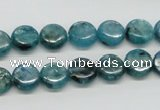CKC21 16 inches 10mm flat round natural kyanite beads wholesale