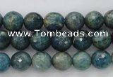 CKC223 15.5 inches 10mm faceted round natural kyanite beads wholesale