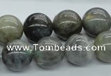 CLB103 15.5 inches 16mm round labradorite gemstone beads wholesale