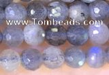 CLB1070 15.5 inches 4mm faceted round labradorite beads