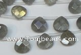 CLB204 Top-drilled 10*10mm briolette labradorite gemstone beads