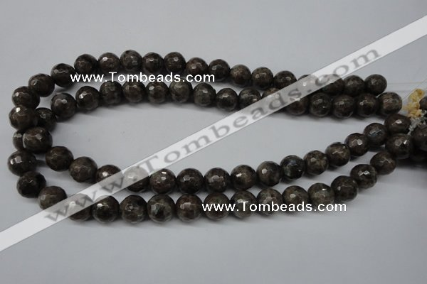 CLB403 15.5 inches 10mm faceted round grey labradorite beads
