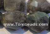 CLB704 15.5 inches 15*18mm - 20*25mm faceted nuggets labradorite beads