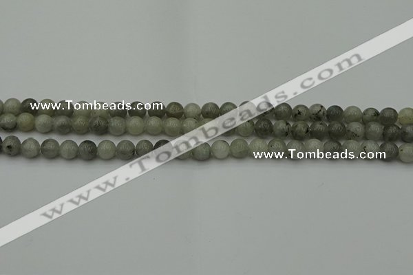 CLB850 15.5 inches 4mm round AB grade labradorite beads wholesale