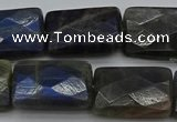 CLB964 15.5 inches 18*25mm faceted rectangle labradorite beads