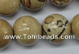 CLD52 15.5 inches 20mm round African leopard skin jasper beads