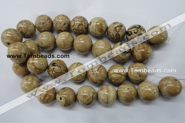 CLD53 15.5 inches 25mm round African leopard skin jasper beads