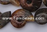 CMM01 15.5 inches 13*18mm - 30*35mm carved ammonite gemstone beads