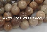 CMS03 15.5 inches 10mm round moonstone gemstone beads wholesale