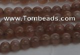 CMS1020 15.5 inches 4mm round AA grade moonstone gemstone beads