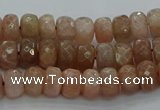 CMS1091 15.5 inches 5*8mm faceted rondelle moonstone beads