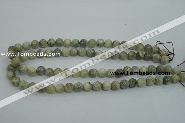 CMS121 15.5 inches 10mm round moonstone gemstone beads wholesale