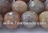 CMS1306 15.5 inches 16mm faceted round AB-color moonstone beads