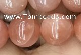 CMS1478 15.5 inches 12mm round moonstone beads wholesale