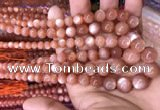 CMS1482 15.5 inches 4mm - 12mm round golden moonstone graduated beads