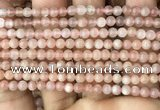 CMS1670 15.5 inches 4mm round moonstone beads wholesale
