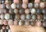 CMS1689 15.5 inches 14mm round rainbow moonstone beads wholesale