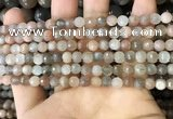 CMS1691 15.5 inches 4mm faceted round rainbow moonstone beads