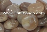 CMS24 15.5 inches 18mm flat round moonstone gemstone beads wholesale