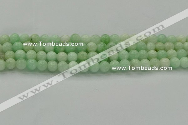 CMS411 15.5 inches 6mm round green moonstone beads wholesale