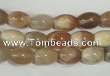 CMS511 15.5 inches 8*12mm rice moonstone beads wholesale