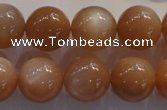 CMS736 15.5 inches 16mm round A grade natural peach moonstone beads