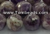 CNA1015 15.5 inches 14mm faceted round dogtooth amethyst beads