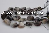 CNG1097 15.5 inches 18*25mm - 25*35mm nuggets botswana agate beads