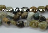 CNG209 15.5 inches 7*9mm nuggets ocean stone beads