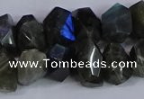 CNG2830 15.5 inches 10*14mm - 13*18mm faceted nuggets labradorite beads