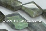 CNG445 15.5 inches 15*20mm � 20*32mm faceted nuggets labradorite beads