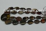 CNG5169 15.5 inches 16*22mm - 30*35mm freeform tiger iron beads