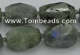 CNG5586 12*16mm - 15*25mm faceted nuggets labradorite beads