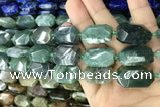 CNG7815 13*18mm - 18*25mm faceted freeform moss agate beads