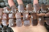 CNG7885 13*18mm - 15*25mm faceted freeform moonstone beads